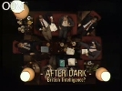 After Dark: British Intelligence?