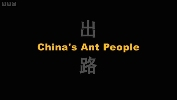 China's Ant People.