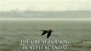 The Great Housing Benefit Scandal.