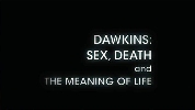 Sex, Death and the Meaning of Life.