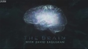 The Brain with David Eagleman.